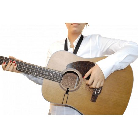 Cordon de guitare BG Standard GCS